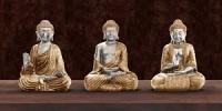 Buddha poster kopen