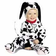 Baby kostuum dalmatier