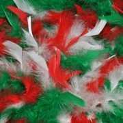 Feest boa groen, rood, wit