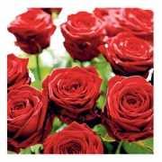 Servetten met rode rozen 33 cm
