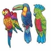 Hawaii vogels voor aan de muur 3 stuks