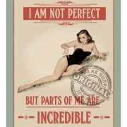 Metalen plaat I am not perfect but incredible