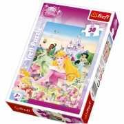 Prinsessen puzzel voor kinderen 30 stukken