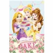 Disney deken Princess 100 x 150 cm