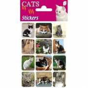 Katten stickers 3 velletjes