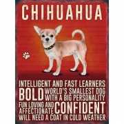 Metalen plaat Chihuahua