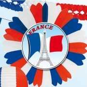 Decoratie waaier Frankrijk