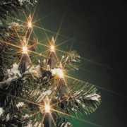 Kerstverlichting helder buiten 160