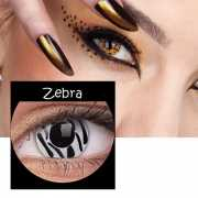 Party lenzen zebra print