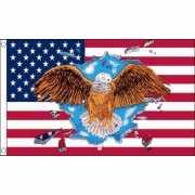 USA vlag met adelaar