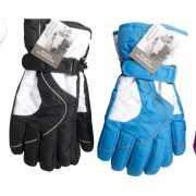 Ski handschoenen voor dames