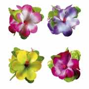Toppers Hawaii haarclip met grote bloem