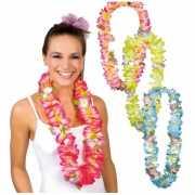Toppers Hawaii krans in verschillende kleuren