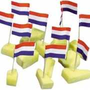 Cocktailprikkers Hollandse vlag