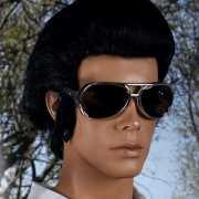 Elvis brillen The King