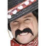Plak snorren voor een Mexicaan