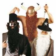 Lange zwarte baard met snor