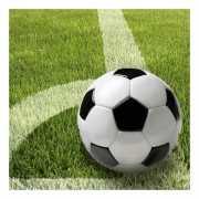 Servetten met voetbal afbeelding 33 cm