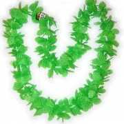 Groene bloemenkrans