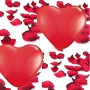Valentijn feestartikelen pakket gr