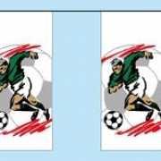 Vlaggetjes slinger met voetballers