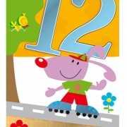 Vrolijke verjaardagskaart 12 jaar