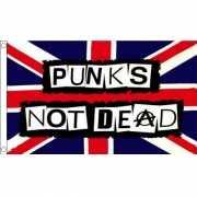 Jaren 80 Punks not Dead vlag 90 x 150 cm