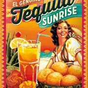 Cocktail muurplaatje Tequila Sunrise 15 x 20 cm