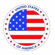 Viltjes met USA vlag opdruk