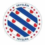 Viltjes met Friesland vlag opdruk