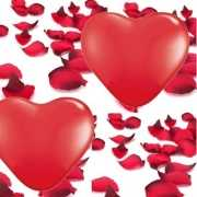 Groot Valentijn versiering pakket