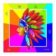 Gekleurde indianen servetten