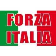 Italiaanse vlaggen met Forza Italia