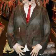 Halloween pop Harry met geluid