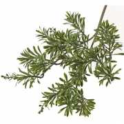 Kunst Artemisia tak 45 cm