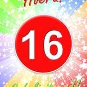 16 jaar verjaardag poster