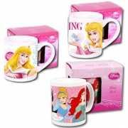 Disney Prinsessen kop