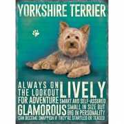 Metalen wand bord Yorkshireterrier