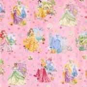 Prinsessen in jurk geschenkpapier