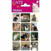 Katten stickers op 3 velletjes