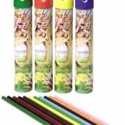 12 kleurpotloden in een koker
