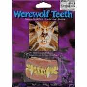 Weerwolf gebitje