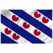 Vlag van Friesland