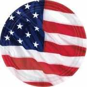 Kartonnen USA bordjes 8 stuks