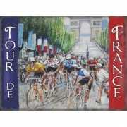 Wandplaat Tour de France