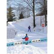Apres Ski decoratie lint