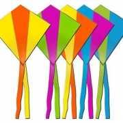Rhombus vlieger in diverse kleuren
