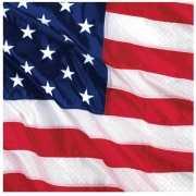 Papieren USA servetten met vlag