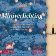 Kerstverlichting helder buiten 120 lampjes