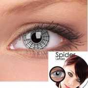 Halloween Party lenzen spider